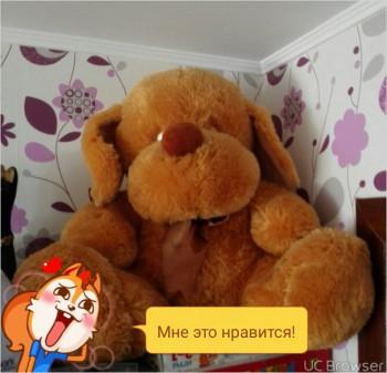 мягкая игрушка -собака - TMPDOODLE1467444019821.jpg
